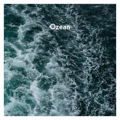 AnnenMayKantereit 2019 Ozean